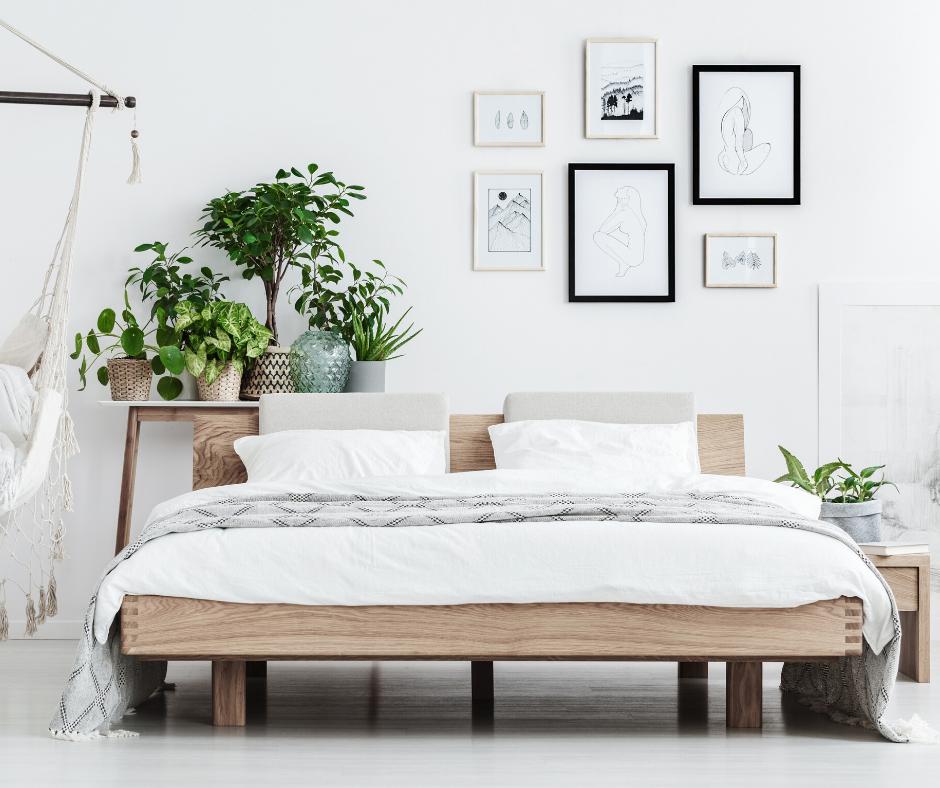 lucht zuiverende planten in de slaapkamer